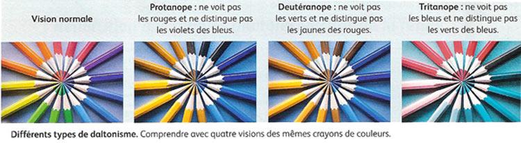 Bien-aimé Les opsines ED34